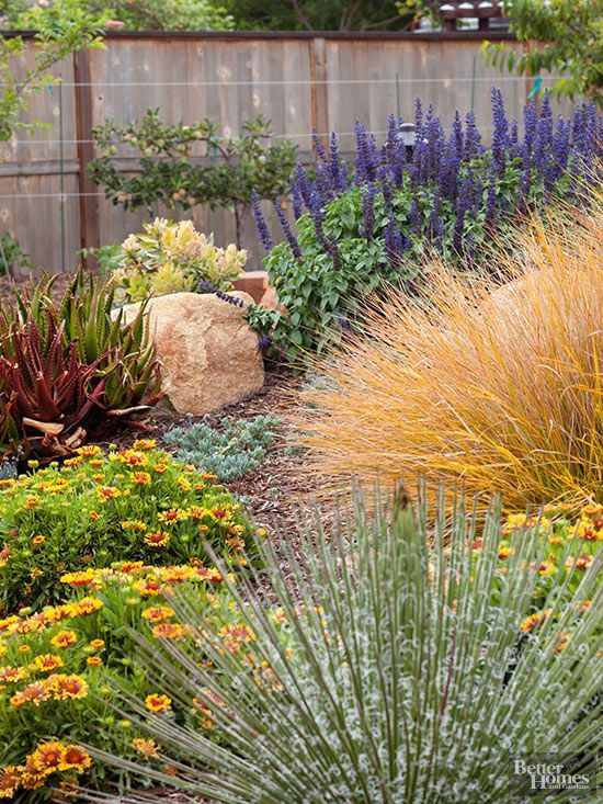 Herbs, ground covers, ornamental grasses, low growing flowers...beautiful