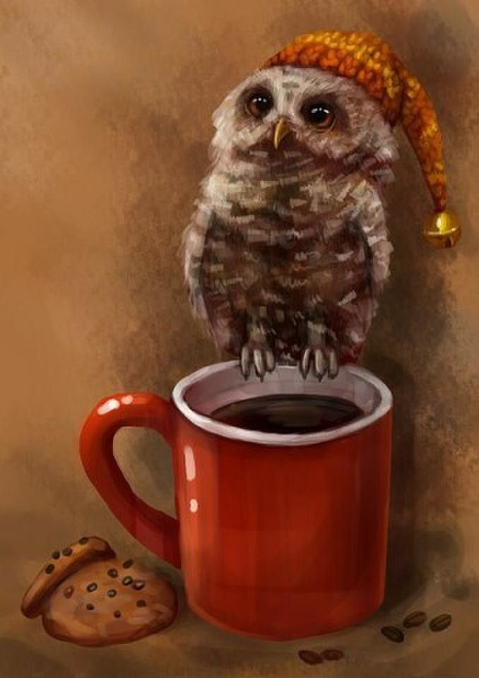 с добрым утром в картинках сова студентов