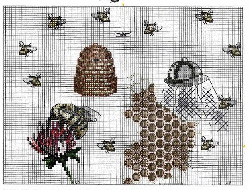 bee hive 1/2