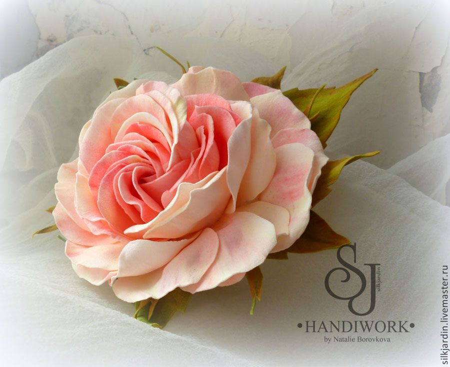 Цветы кентрантус посадка и уход фото