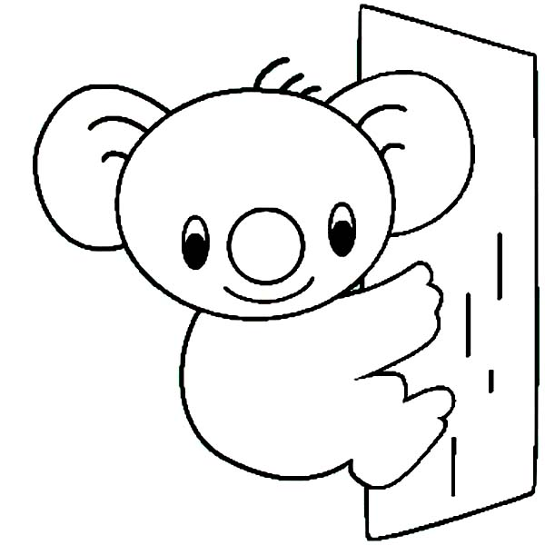 Cute Koala Bear Coloring Page Color Luna Bear coloring