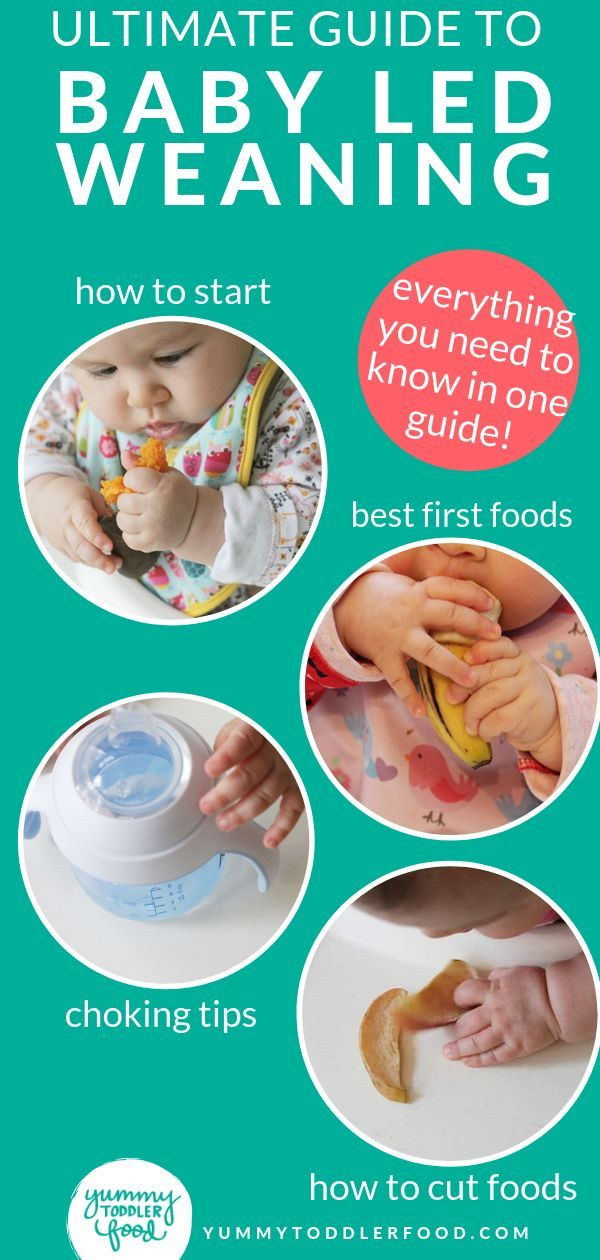 Ultimate Guide to Baby Led Weaning (and Best First Foods ...
