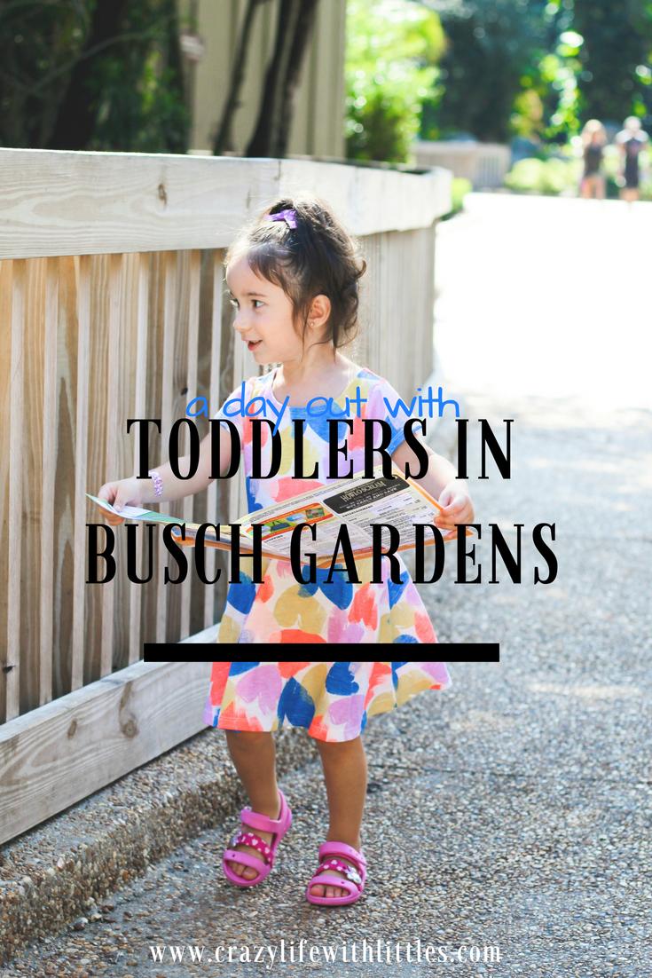 Preschool Pass Busch Gardens Tampa 2019