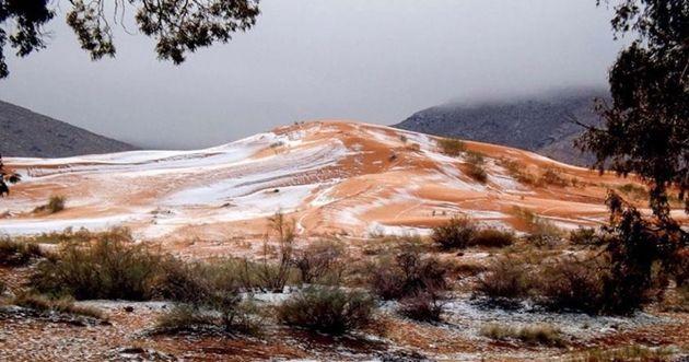 El Desierto del Sahara recibió la nieve por primera vez en 30 años (+fotos)