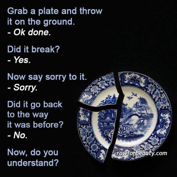 Example Metaphor Analogy Saying Sorry Sayings Plates