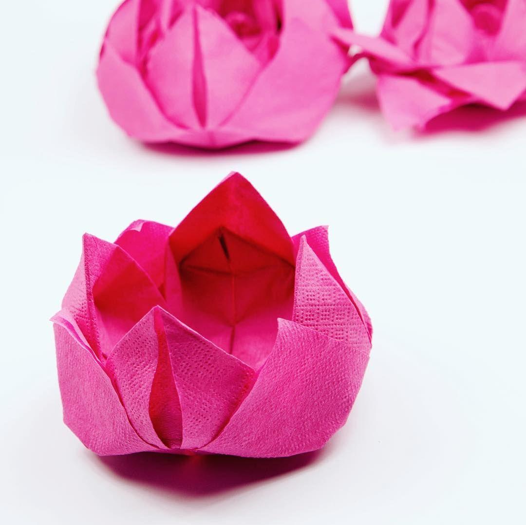 Origami Napkin Lotus Flowers Origami Pinterest Origami