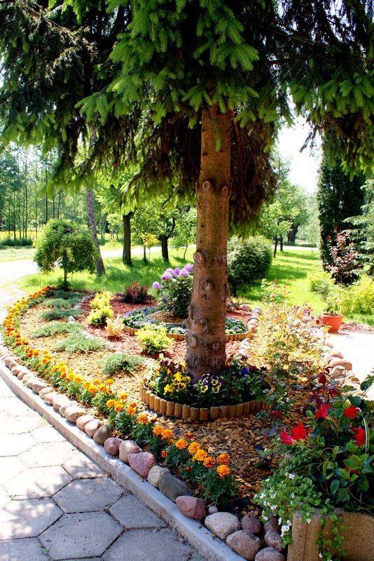 Rabata Pod Swierkiem Sidewalk Plants Curb Appeal