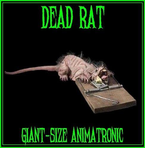 dead rat animated halloween decoration animatronic halloween prop