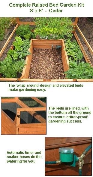 elevated cedar complete raised garden bed kit 8x8x20 eartheasy
