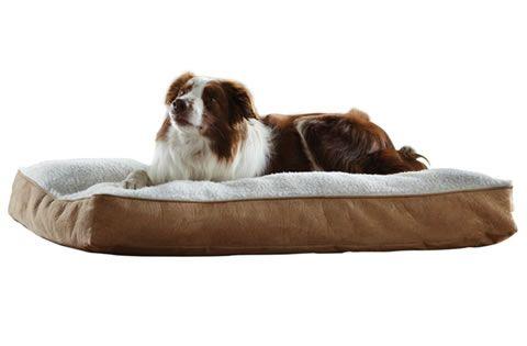 Camas para perros grandes lll encuentra la cama m s for Cama grande