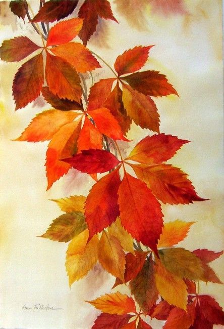 AUTUMN ART (Ann Fullerton WATERCOLOR):Virginia Creeper fall painting