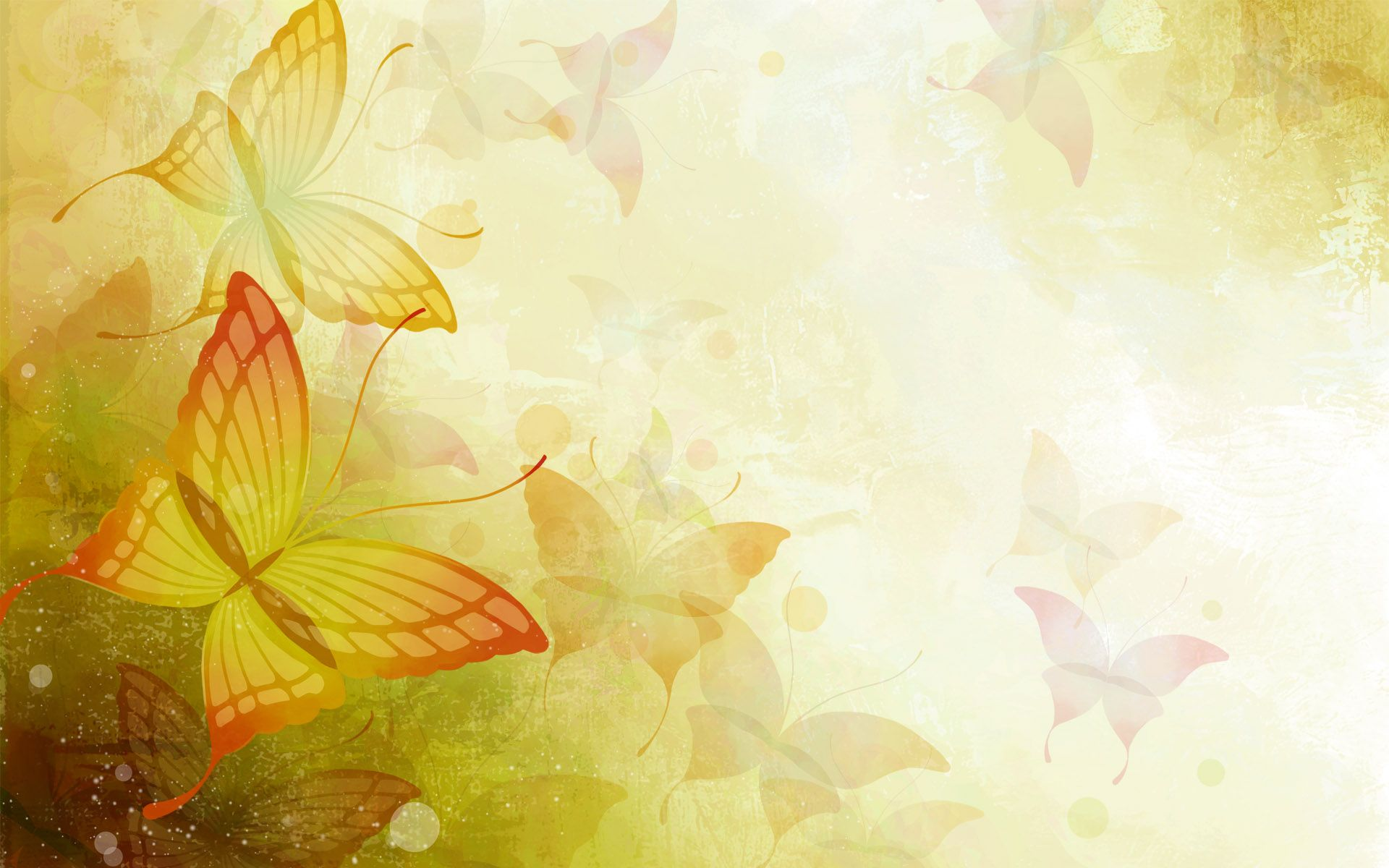 Flower butterfly autumn backgrounds for powerpoint templatesg flower butterfly autumn backgrounds for powerpoint templatesg 19201200 vrtec pinterest toneelgroepblik Choice Image