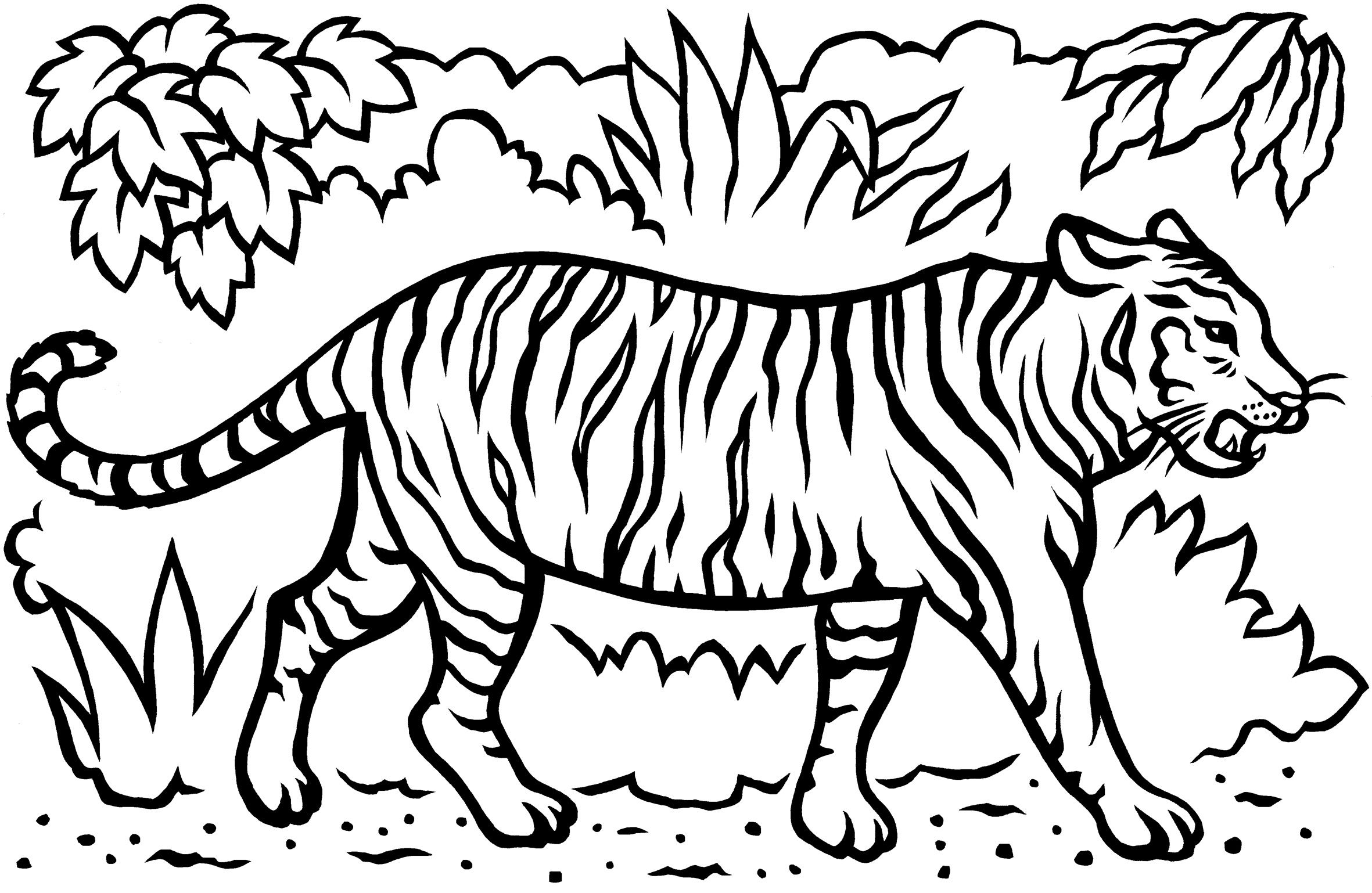 Drawn Jungle Save The Tiger 981 Shark Coloring Pages Tiger