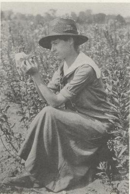 Frieda Cobb [Blanchard] (1889-1977) Frieda Cobb fue una de las primeras genetistas norteamericanas. Realizó investigaciones sobre herencia mendeliana y mutaciones en plantas y reptiles entre 1916 y 1956, un momento en que se establecían las bases de la genética cromosómica. Además de realizar y publicar sus propias investigaciones, fue la principal ayudante y colaboradora de tres científicos relevantes: Nathan Cobb (su padre), Harley Bartlett (su director en la universidad de Michigan) y…