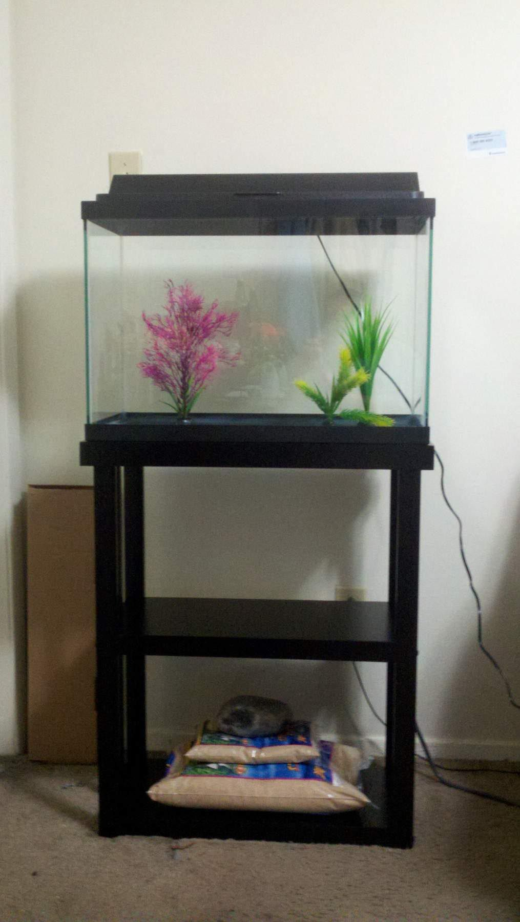 10 gallon fish tank stand ideas for your aquarium for Fish tank table stand