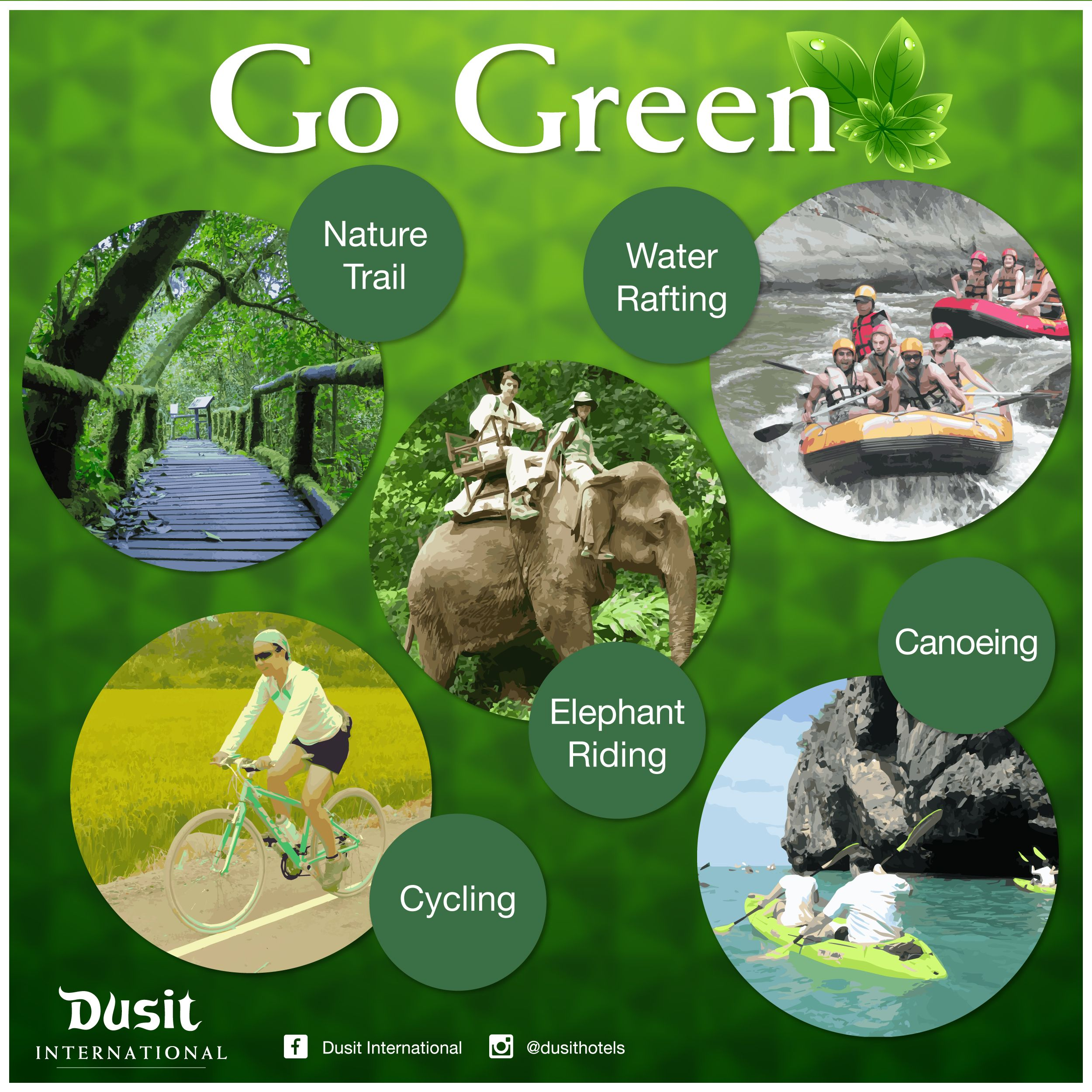 Today is World Environment Day! Here are some green activities for ...