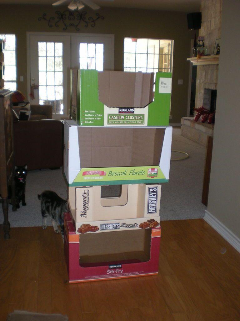 5 minute recycled cardboard kitty condo cat condo cat