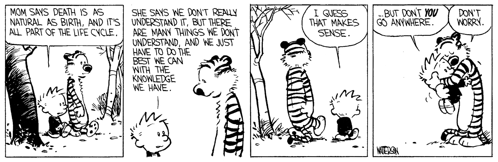 But Don T You Go Anywhere Calvin And Hobbes Calvin And Hobbes Best Calvin And Hobbes Calvin And Hobbes Comics