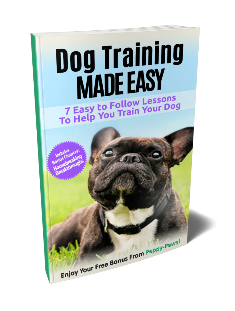5 Commands Every Dog Should Know Dogs Dog Training Tips