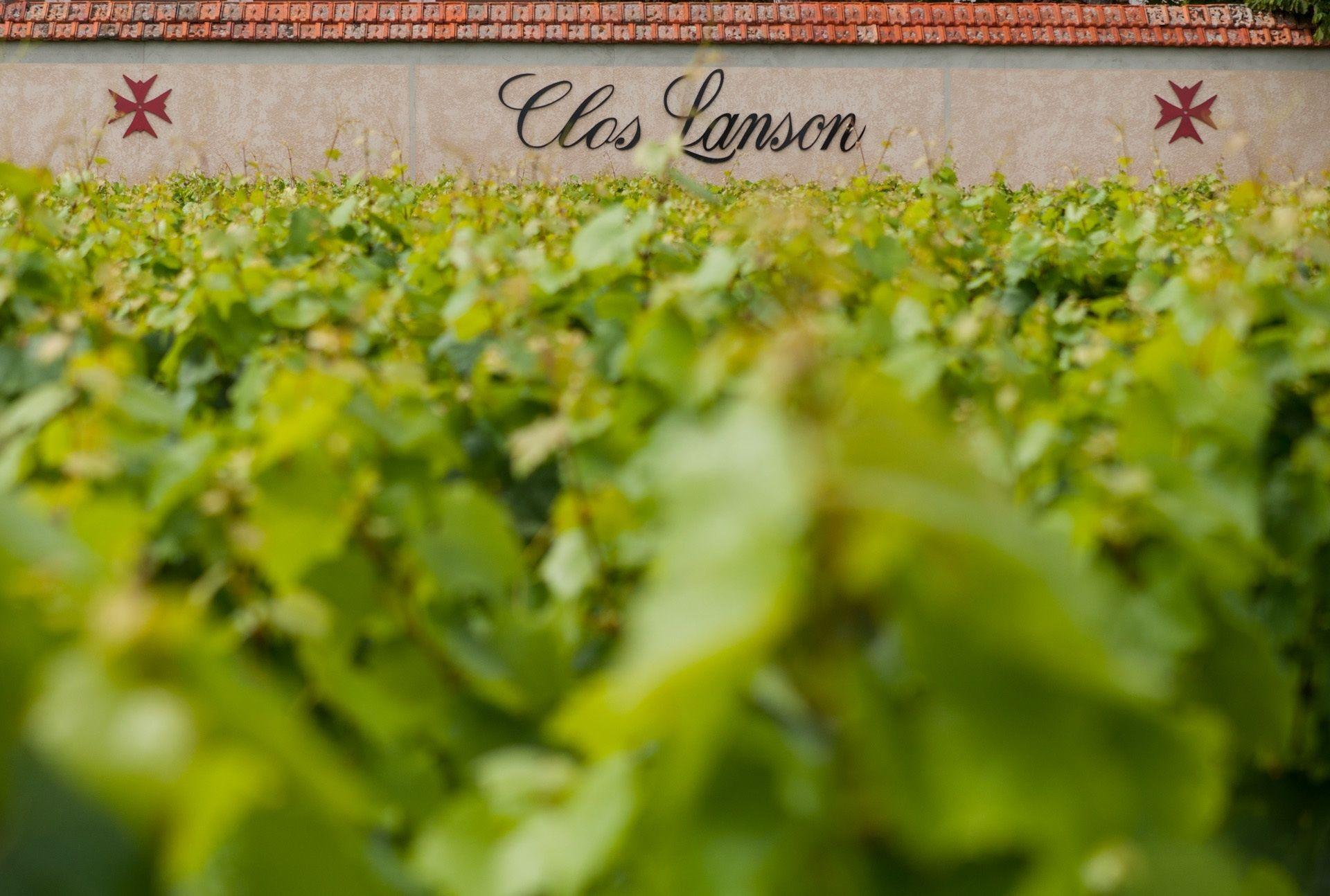 Champagne #lanson #wine