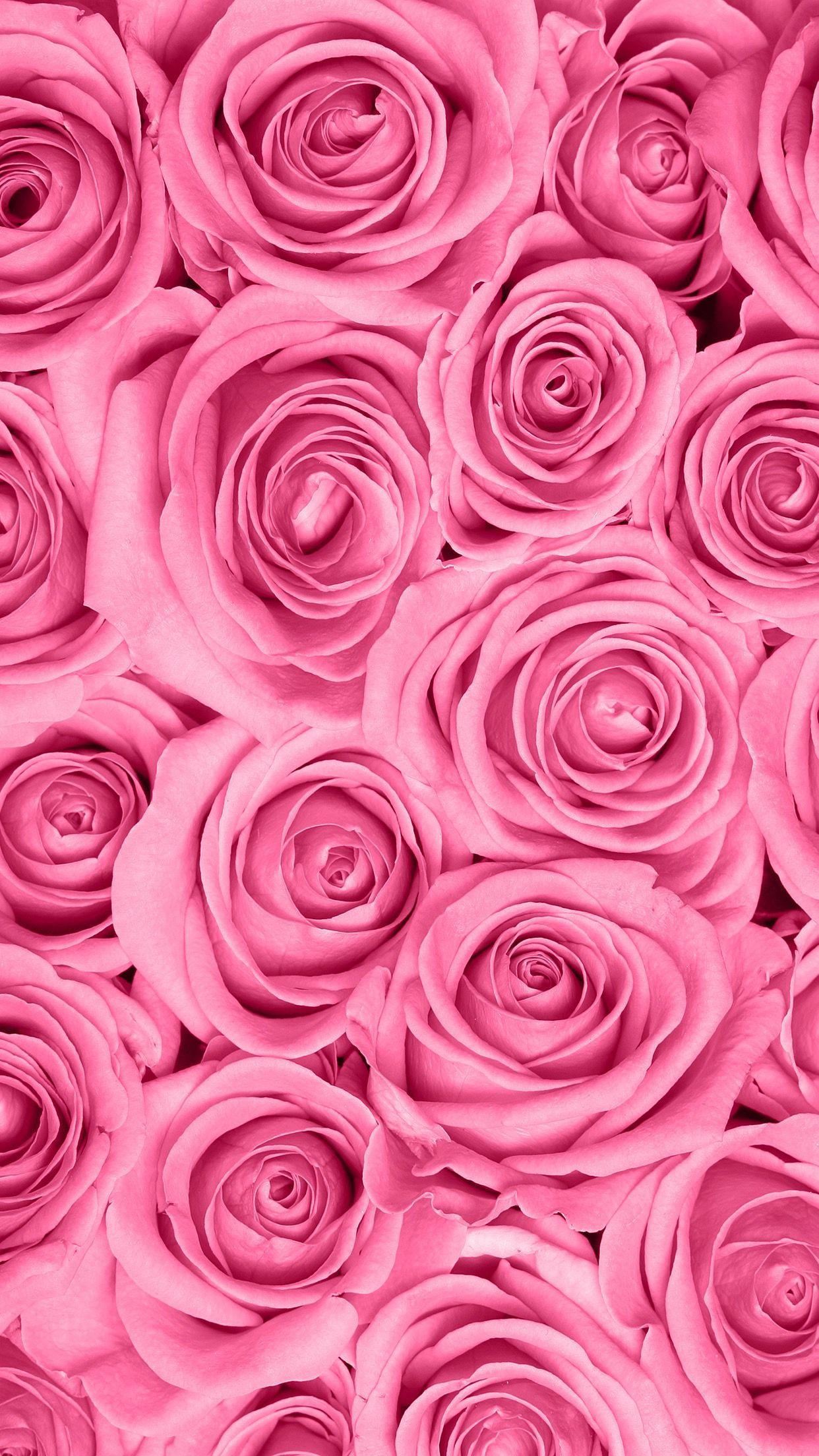 ig iridescent_koi °• Flower wallpaper, Rose wallpaper
