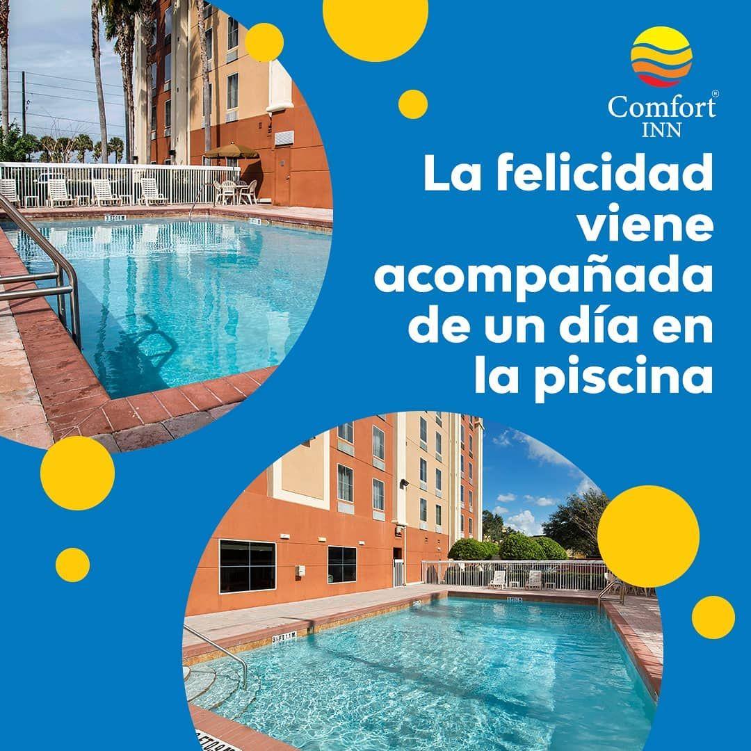 Venga Y Pase Unos Dias Con La Familia En Nuestro Hotel Comfort Inn