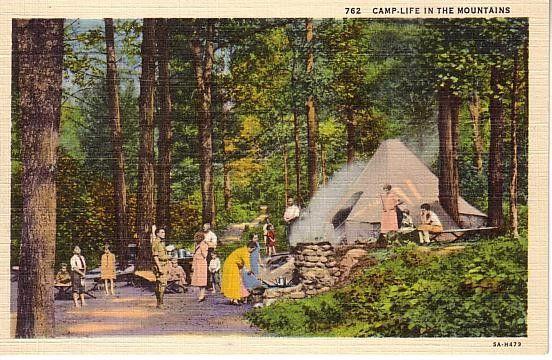 12 Best Camping images   Vintage camper, Vintage trailers