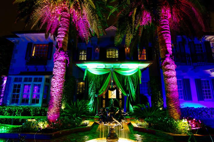 incredible lighting miami palm trees & incredible lighting miami palm trees | Wedding Entertainment ...
