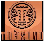 Tresind  Indian modern Radisson Royal Hotel Tel: 04 30 80 440