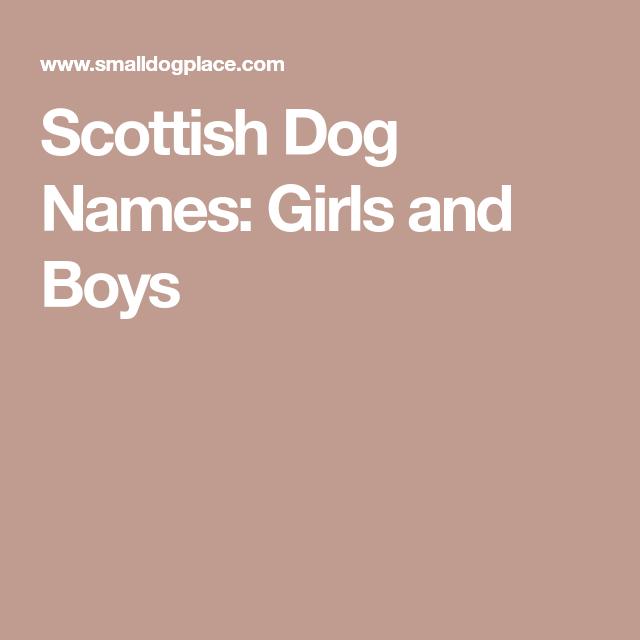 Scottish Dog Names Girls And Boys Dog Names Girl Dog Names