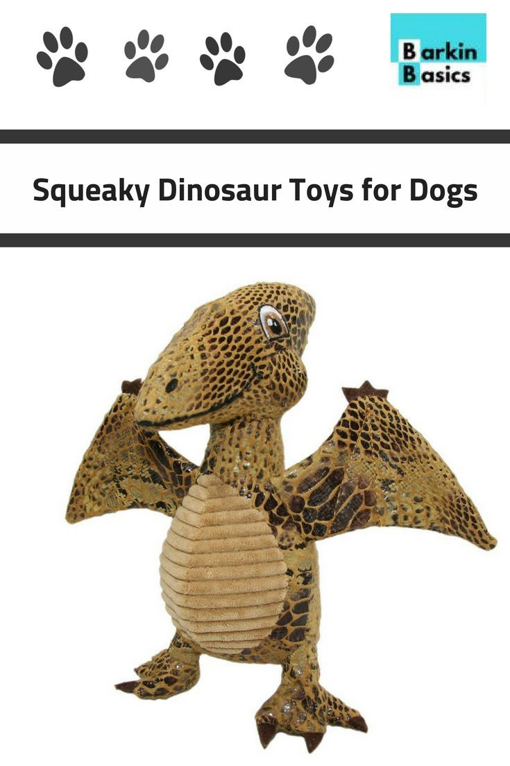 DOGGIE DINO FUN Treat your pup to our all new plush dog