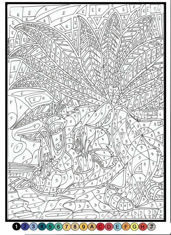 Coloriage Adulte A Imprimer Avec Numero.Epingle Par Ellen Rose Sur Arts N Crafts Coloriage