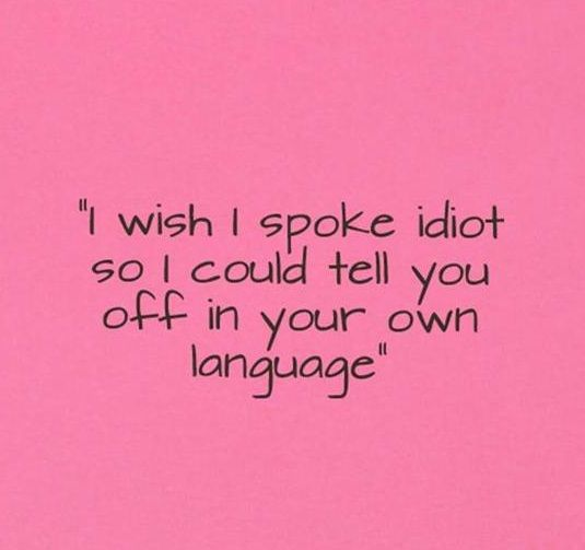 Pin By Terri Booth On Good To Know And Laugh About Idiot Quotes Funny Quotes Quotes
