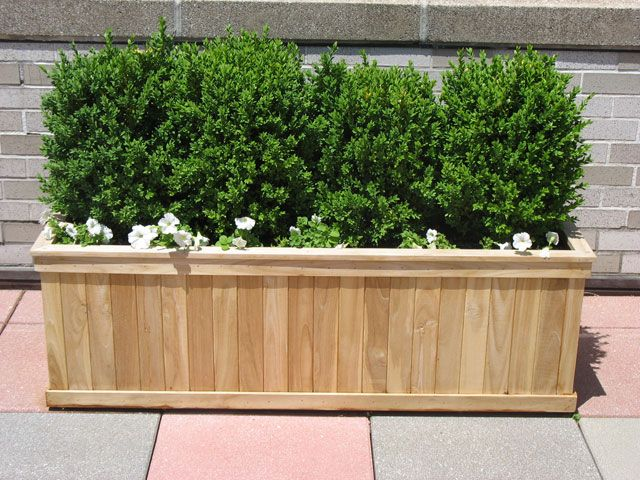 Large Rectangular Wooden Planters Provide The Perfect Support For Larger  Shrubs In Your NYC Urban Garden