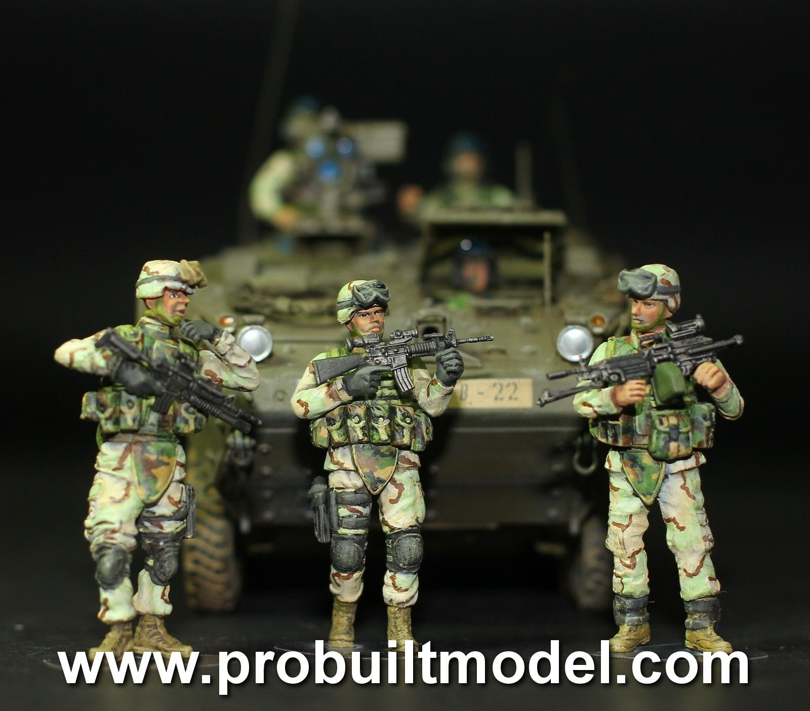 Modern US Army Armor Crewman And Infantry In Iraq And