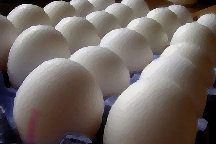 cuanta proteina contiene el frijol