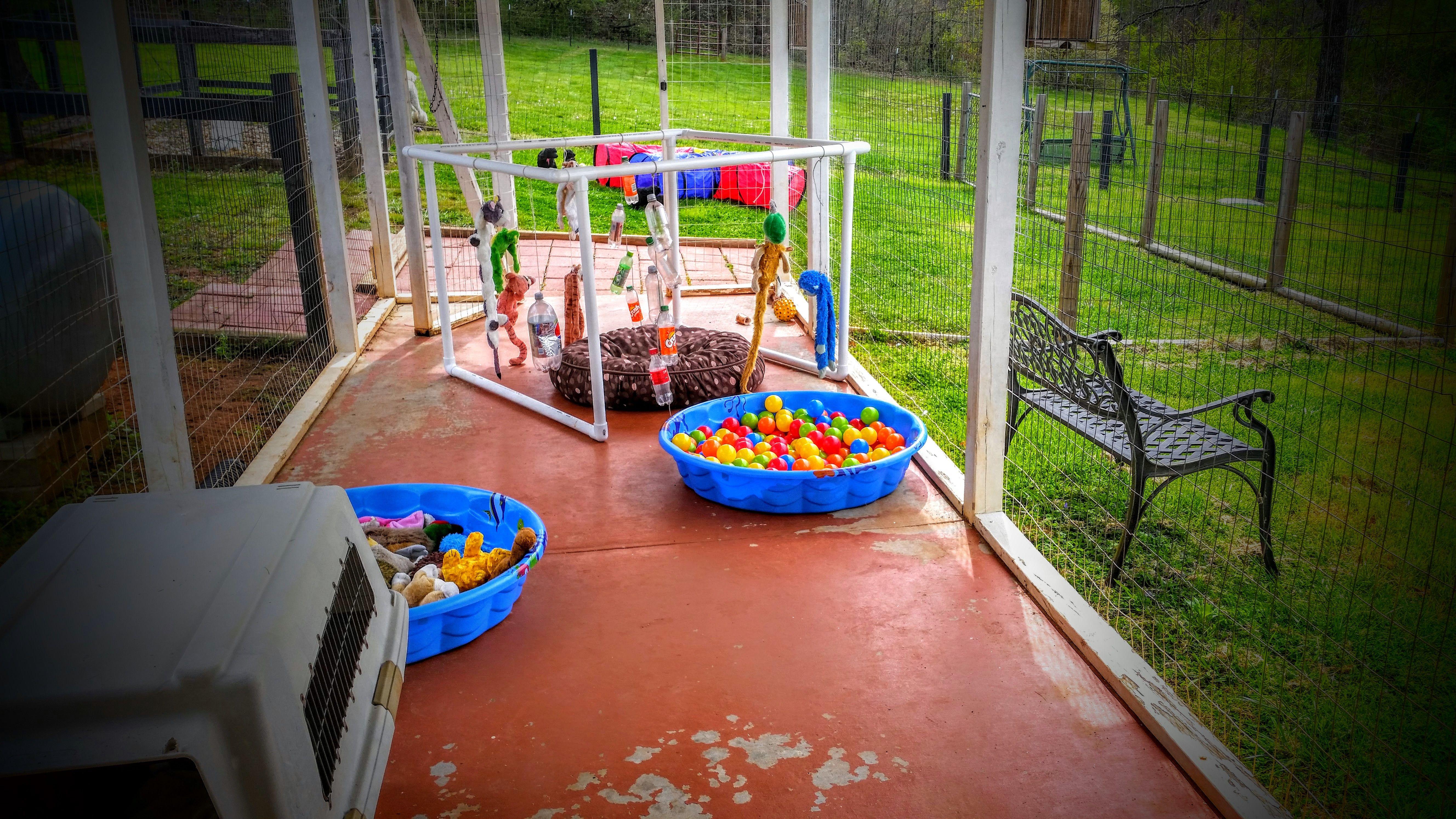 The Puppy Playground Dog Playground Puppy Playground Diy Dog Stuff Diy backyard dog playground
