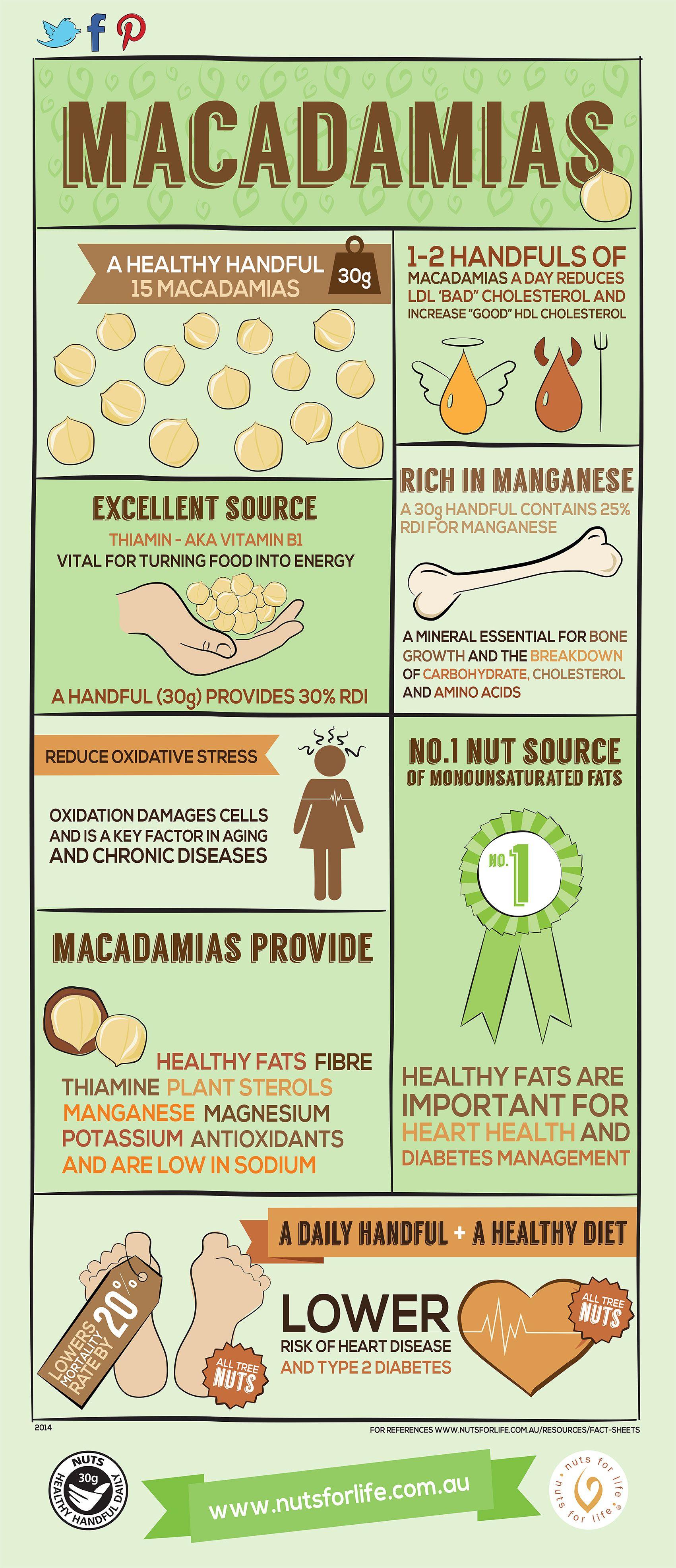Health Information About Macadamias Macadamia Macadamianut Australianmacadamias Http Www Australian Maca Macadamia Nut Benefits Nut Benefits Milk Benefits