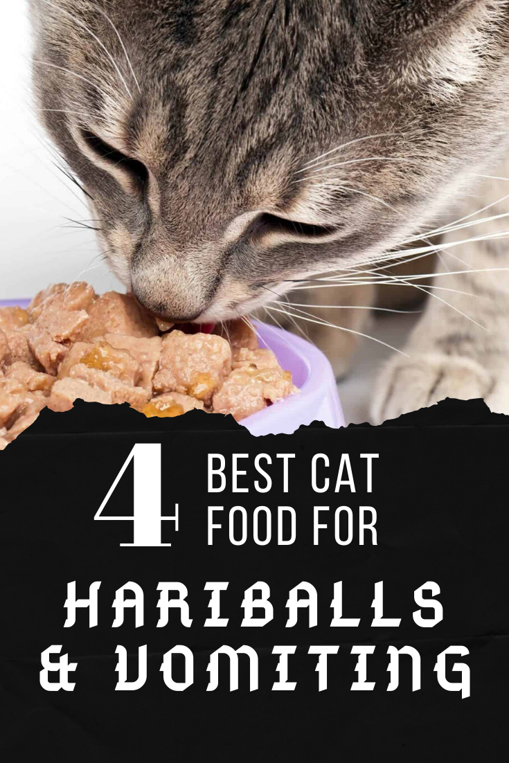 The Best Cat Food For Hairball Prevention And Vomiting
