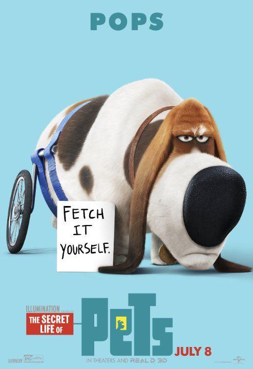 The Secret Life Of Pets 2016 Pets Movie Secret Life Of Pets Pet Pop