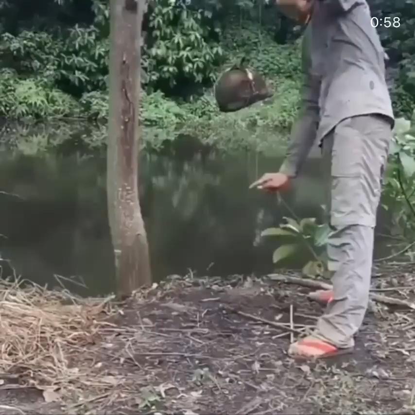 Fishing Video In 2020 Wow Video Survival Life Hacks Useful Life Hacks
