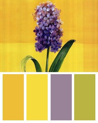 Purple Lilac Flower On Yellow Color Palette