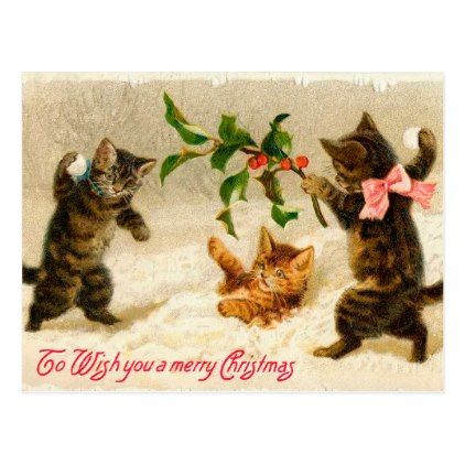 Due A pussy cats christmas