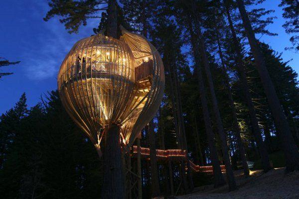 yellow treehouse restaurant | auckland, new zealand