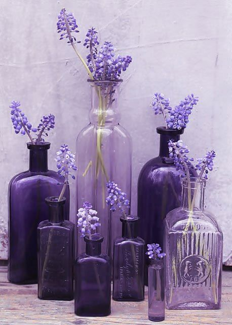 Collection of violet bottles with lilacs. Magenta, Purple Love, All Things Purple, Purple Rain, Shades Of Purple, Purple Glass, Purple Flowers, Purple Stuff, Lavender Flowers