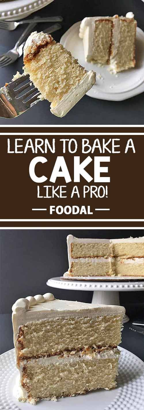 Guide to Basic Cake Baking: Tips and Tricks to Help You Bake Like a Pro