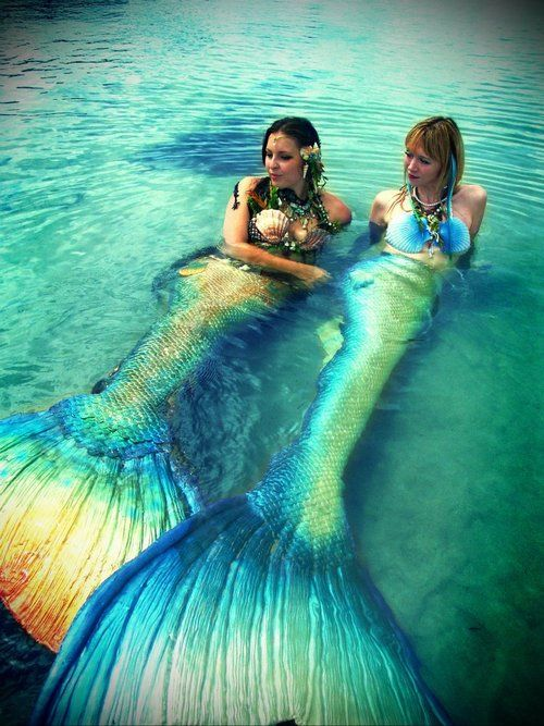 Questions about the Mermaids that what to know more:   1. How did the mermaids get their own fish tail in the early ages?  2. What do mermaids do?     Answer: