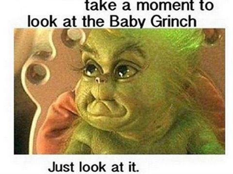 Pin By Hayley Munsey On Funnies Baby Grinch The Grinch Movie Grinch