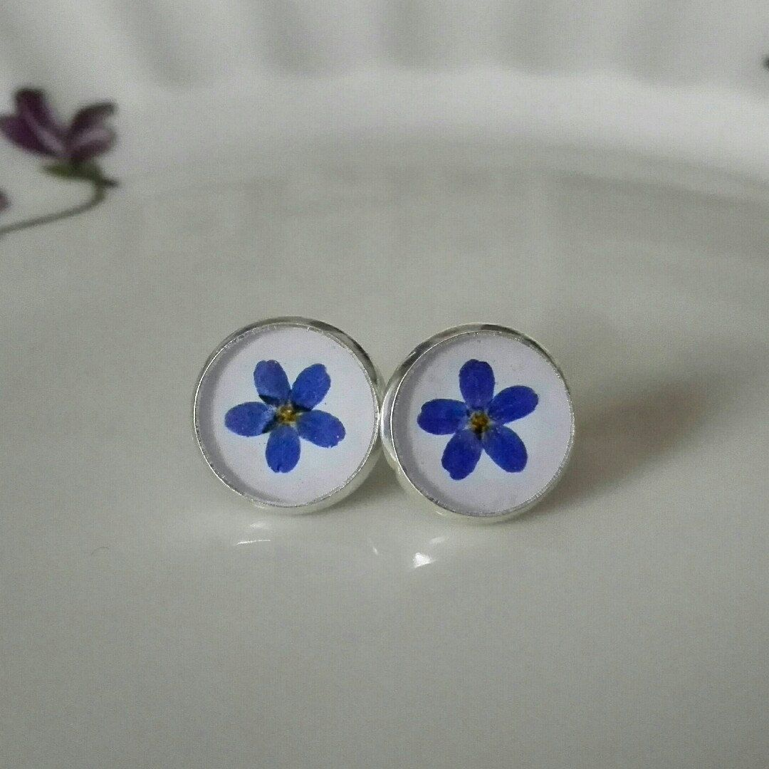 New lovely Forget Me Not collection is coming!