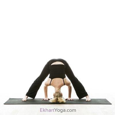 yoga poses  yoga asanas yoga poses types of yoga